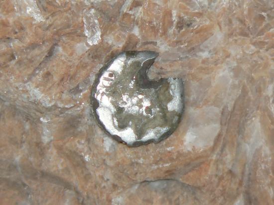 denier fourré (époque romaine)